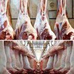گوشت گوسفندی استرالیایی