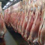 گوشت گوسفندی منجمد