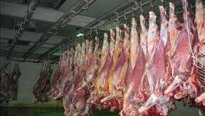 قیمت گوشت گوسفندی
