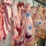 گوشت گوسفندی درمشهد